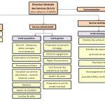 Organigramme site internet